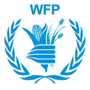 Chief of Strategic Communications, UN World Food Programme